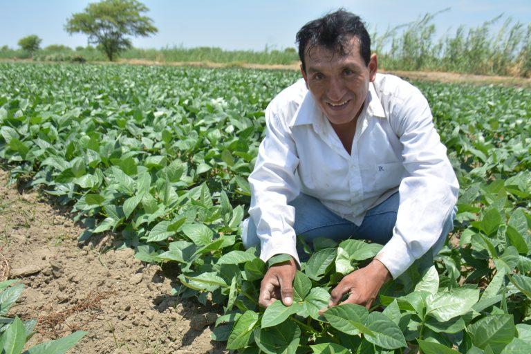 Gobierno inicia implementación de FAE-Agro para inyectar S/ 2,000 millones en créditos