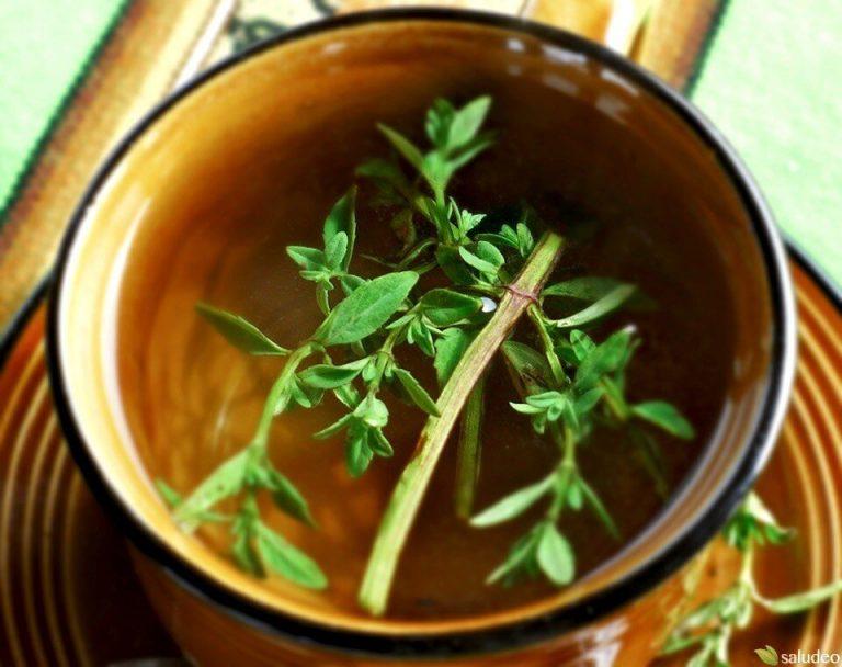 5 plantas medicinales que te ayudarán a combatir males respiratorios