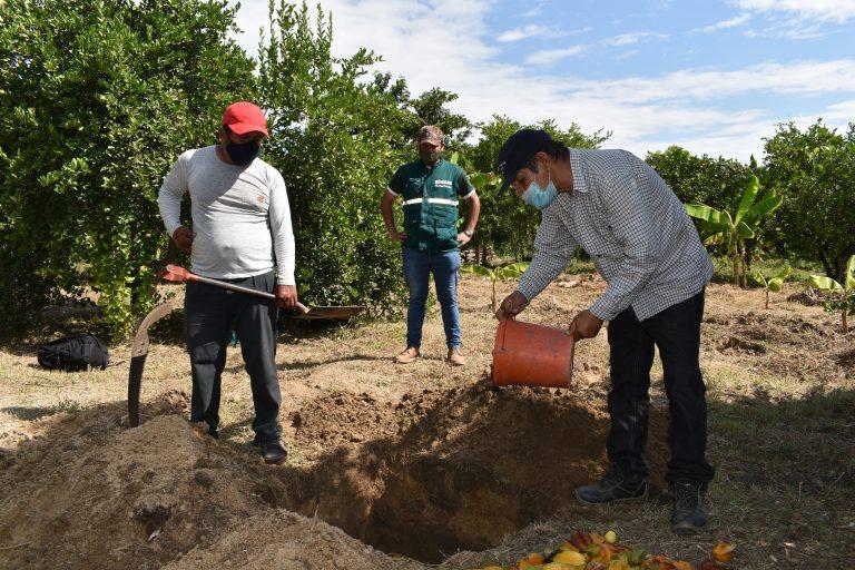 5 mil productores son capacitados en la erradicación de las moscas de la fruta en Piura