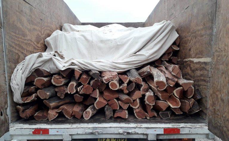 Intervienen un camión con 515 unidades ilegales de leña de algarrobo