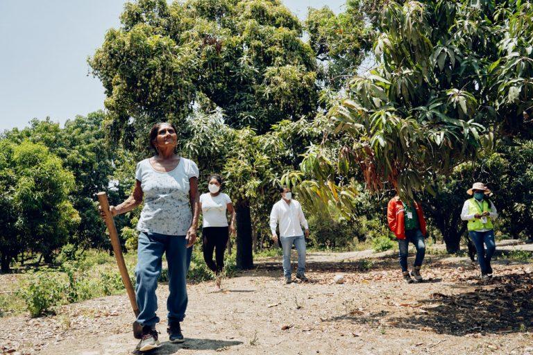 FAO destaca a startup peruana como experiencia exitosa de digitalización en la agricultura