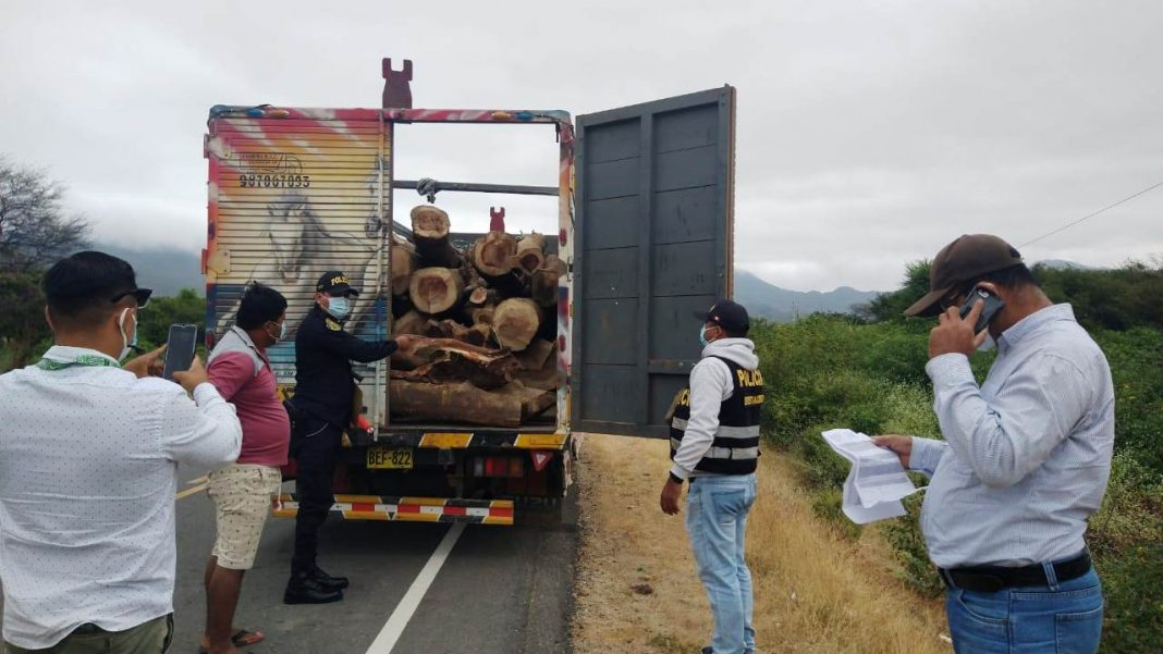 Intervienen trozas de faique por presentar Guía de Transporte Forestal adulterada en Piura