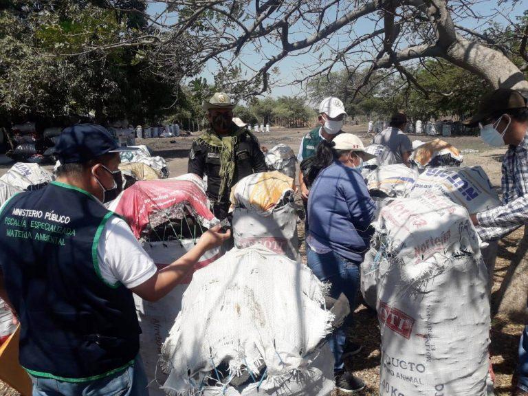 Intervienen más d 10 toneladas de carbón de algarrobo de procedencia ilegal