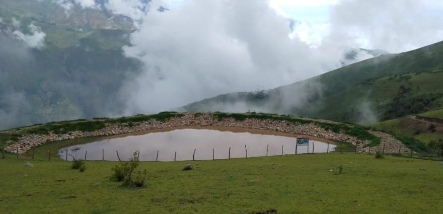 Piura: Exportadores de banano apuestan por la conservación de las nacientes de agua