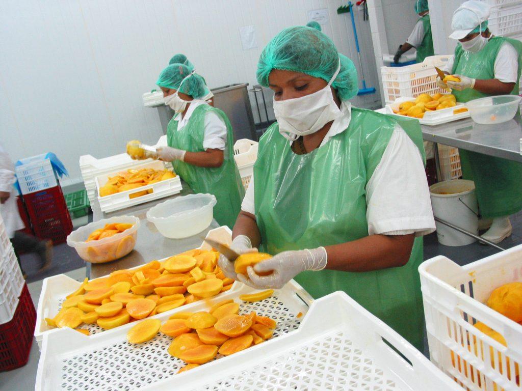 Exportaciones de alimentos piuranos alcanzaron los US$ 979 millones 185 mil hasta julio.